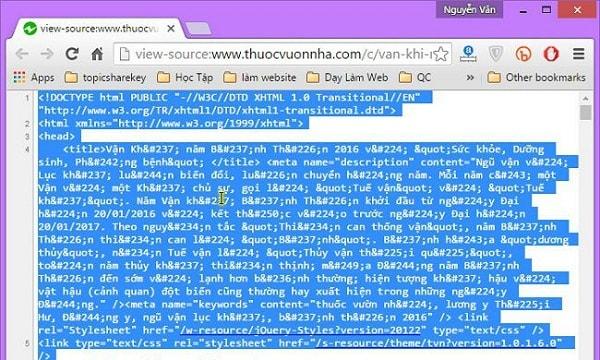 Bạn copy hết toàn bộ mã nguồn ở trang web có view – source phía trước