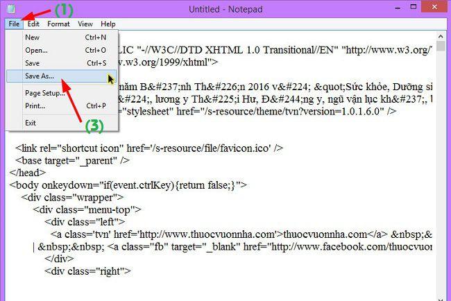 Ở thư mục bạn dán mã nguồn rồi click vào file và chọn Save as
