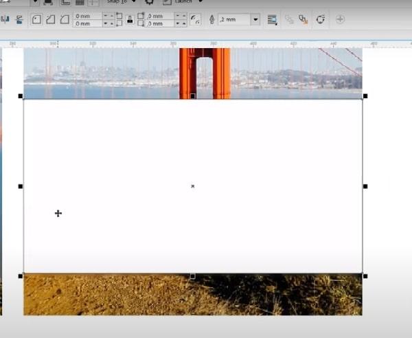 Bạn click vào tùy chọn màu để biến khung hình thành màu trắng